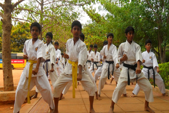 Shri Somanatha Green Fields Public-Karate