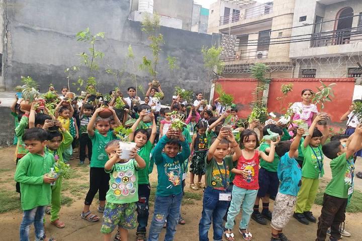 Hari Krishna Public School-Plantation