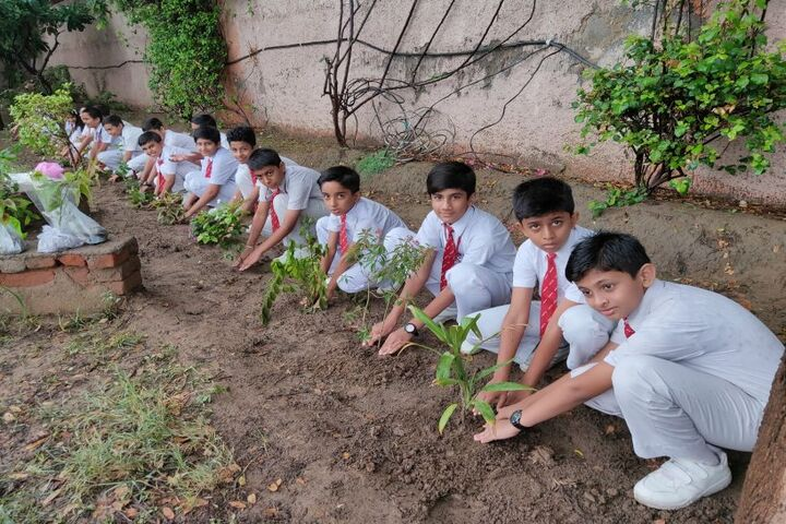 Jinvani Bharti Public School-Plantation