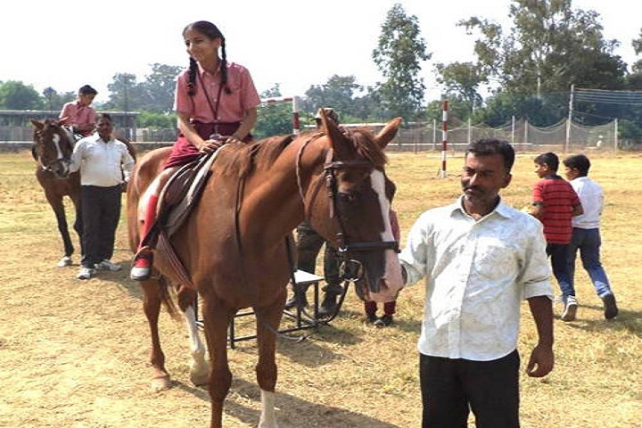 Kasturi Ram International School-Horse Riding