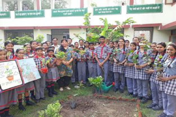 Kendriya Vidyalaya No 1-Tree Plantation