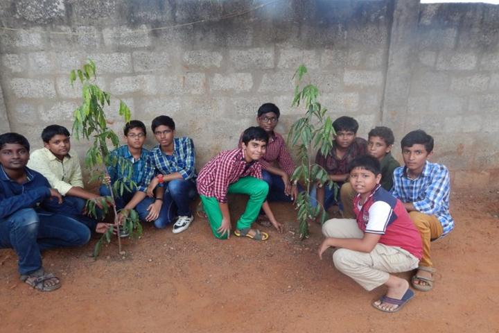 St John s English Medium High School-Tree Plantation