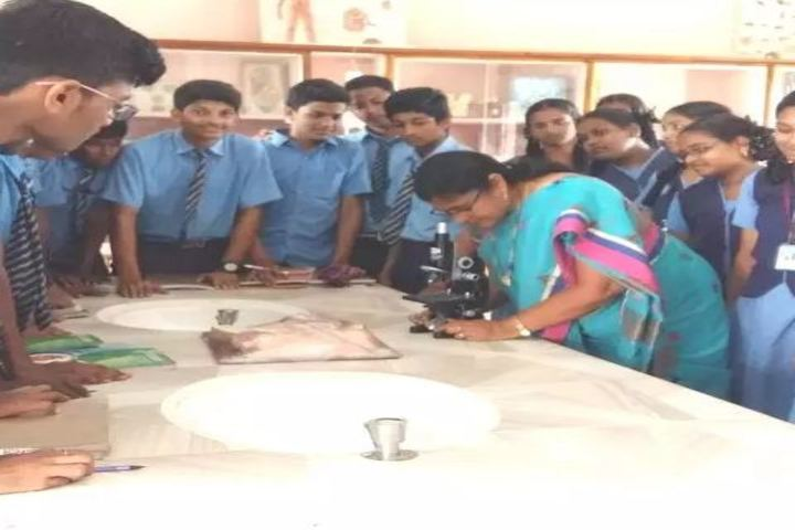 St Anns English Medium High School-Biology Lab