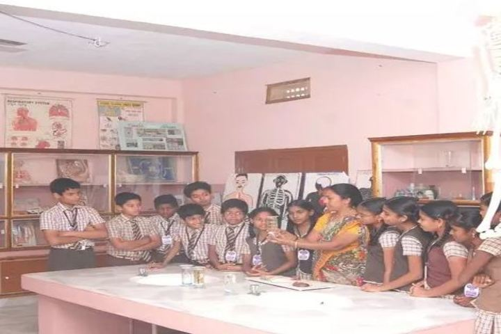 St Anns English Medium High School-Lab