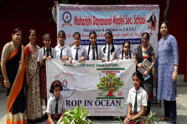 Maharishi Dayanand Model School-Others plantation