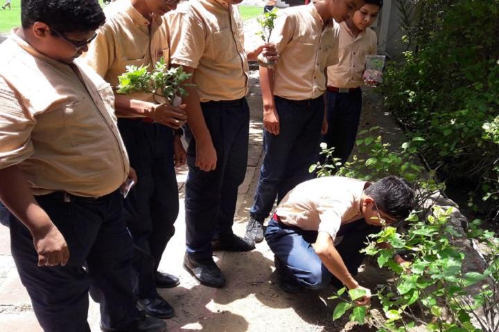 Margshree School-Others plantation