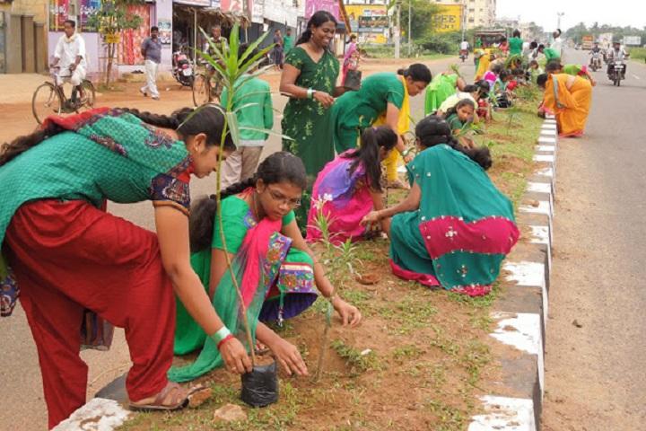 Subha Niketan English Medium School-Plantation
