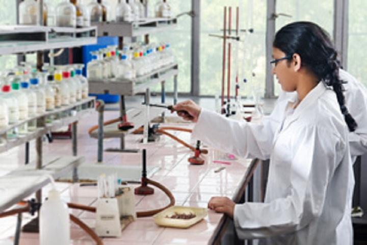 Mater Dei School -Laboratory