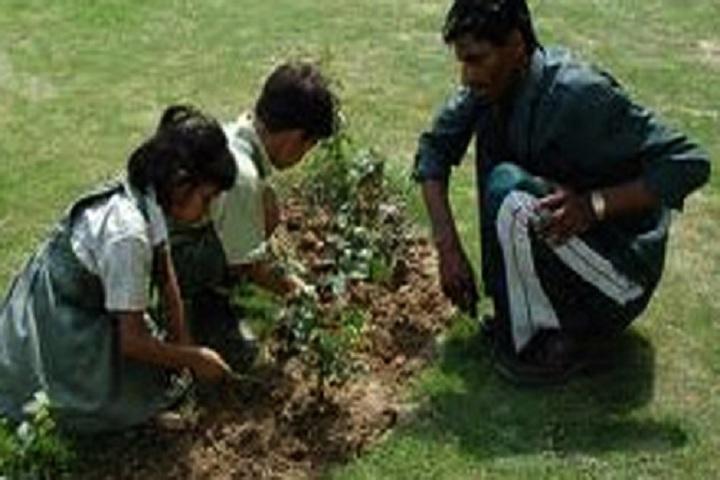 New Saraswati Public Secondary School-Planting Trees