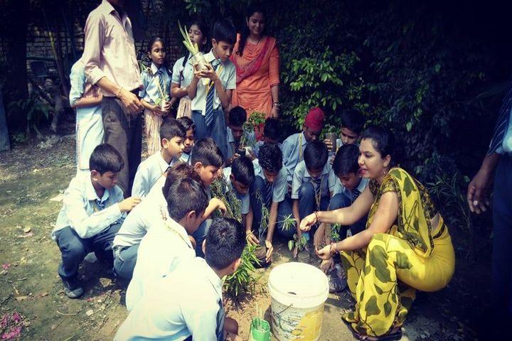 R D International School-Plantation
