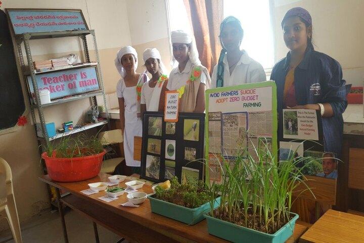 Vidyanjali School-Art Experiment