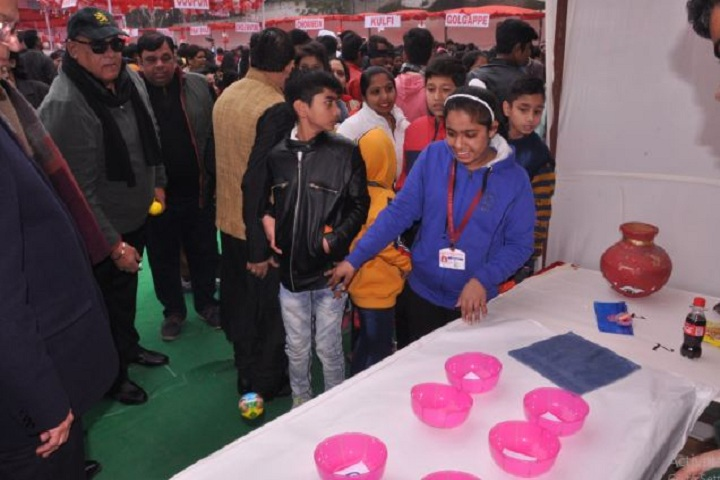 S D Public School-School Exhibition