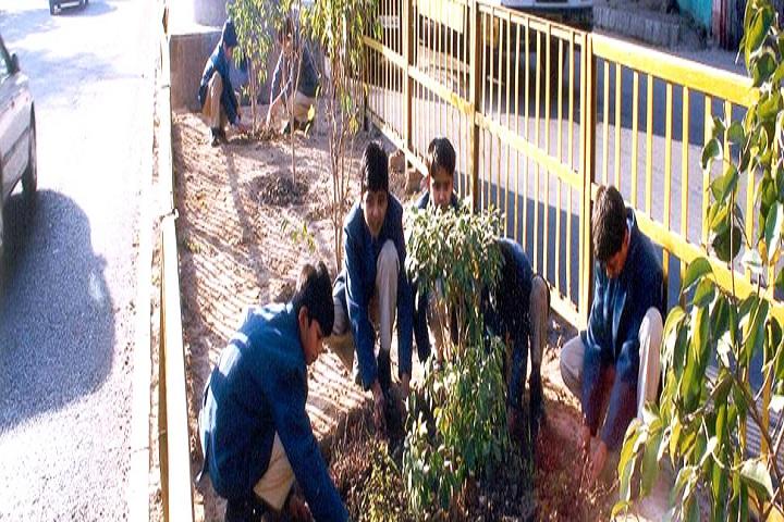 Salwan Public School-Plantation