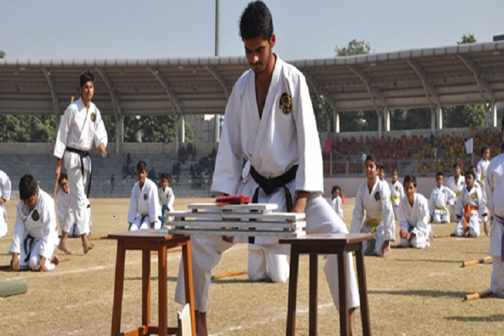 The Srijan School-Karate