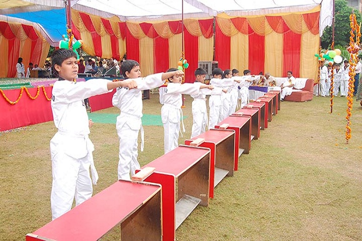 Vanasthali Public School-Karate