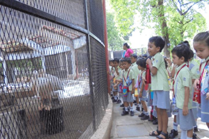 D R Amin Memorial School-Field trips1