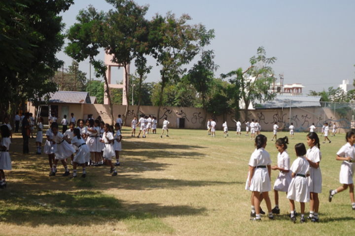 Delhi Public School-Children park