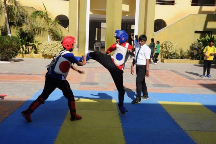 Delhi Public School-Kick boxing