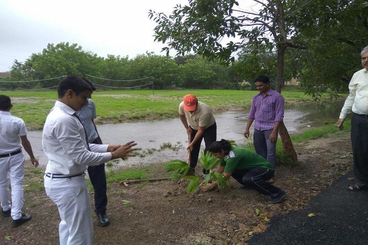 Jawahar Navodaya Vidayalaya-Tree Plantation