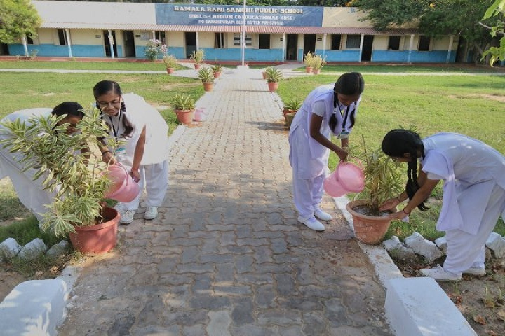 Kamala Rani Sanghi Public School-Tree Plantation