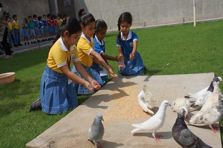 Lakshaya International School-Kids