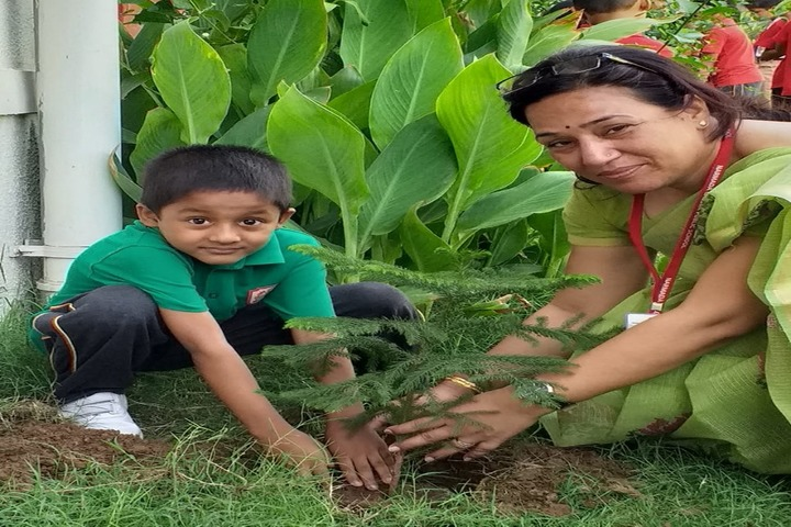 Narmada Calorx Public School-Haritha Haram