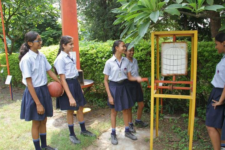 New Era Senior Secondary  School-Park