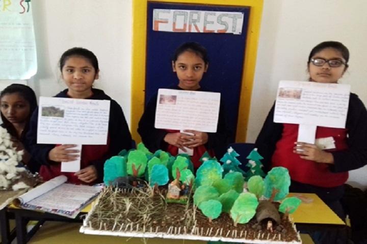 Santokba English Medium School-Project