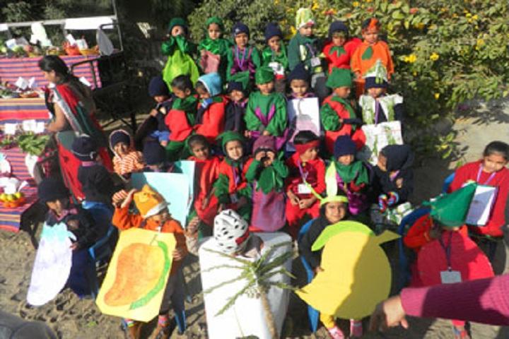 Shree Swaminarayan Vidyalay-Activity