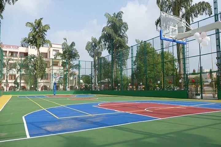 The New Tulip International School-Playground