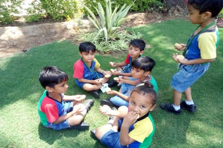 Vibrant International Academy-Activity