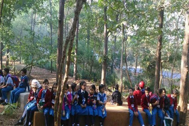 Vidya Dham International School-Field Trip