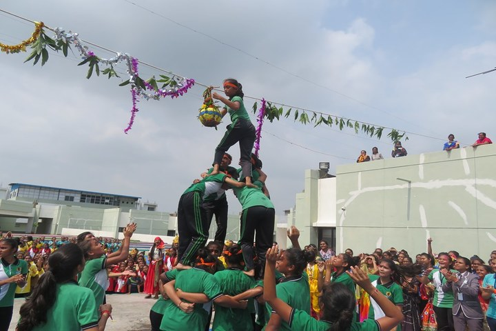 Vishwa Bharti Girls International School-Krishnastami Celebrations