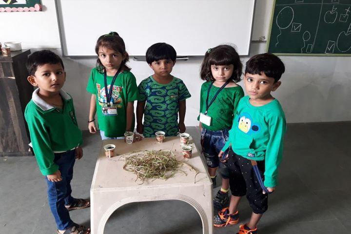 Vision International School Of Excellence-Environment Day