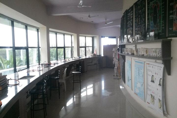 Zen School-Library