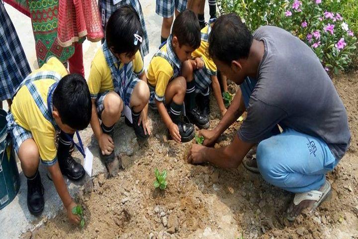 Aakash International School-Tree Plantation