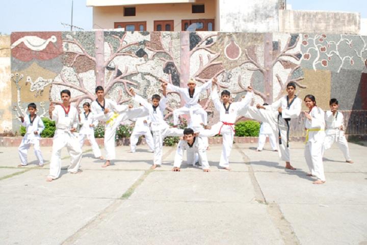 Anand Public School-Karate