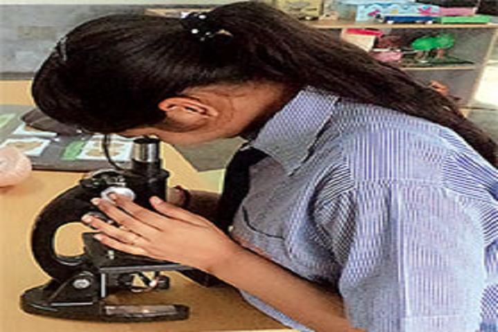 Apeejay Svran Global School-Lab
