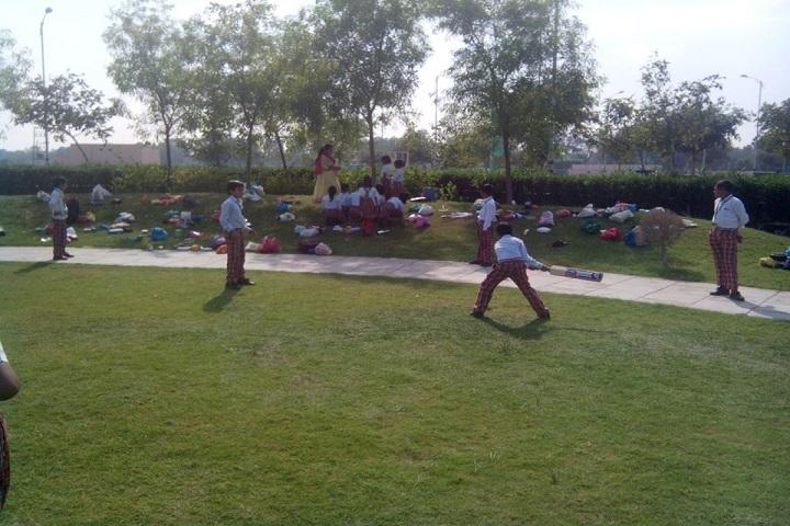 Apex Public School-Play Area