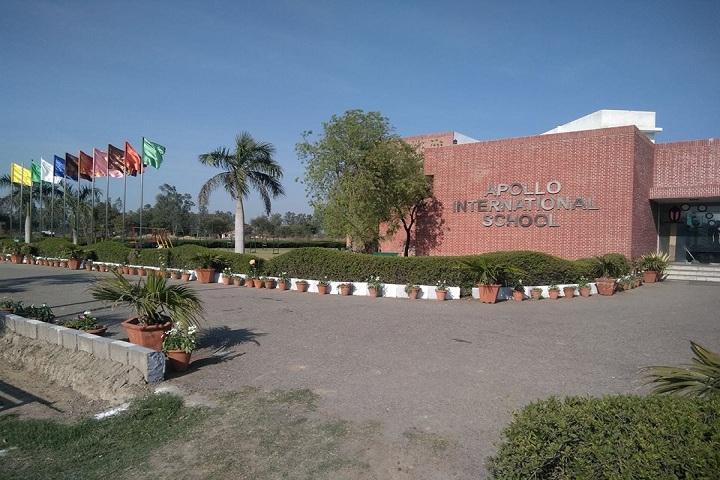 Apollo International School-School Building