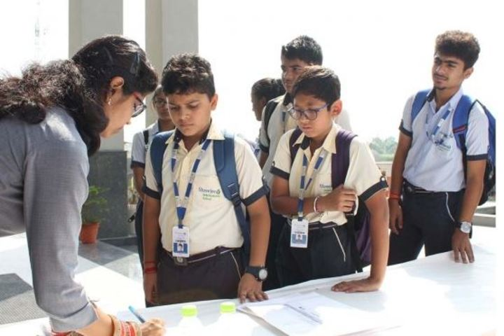 Apollo International School-Quiz Activity