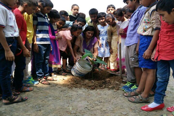 Arya Senior Secondary School-Tree Plantation
