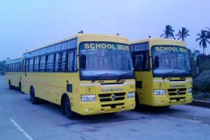 Bansi Vidya Niketan Senior Secondary School-Transport