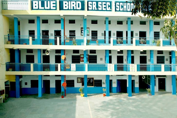 Blue Bird Senior Secondary School- campus