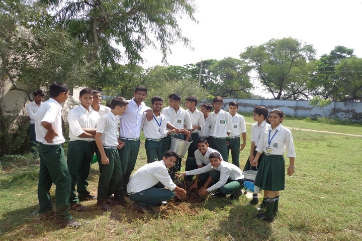 C R Public School-Tree Plantation Day