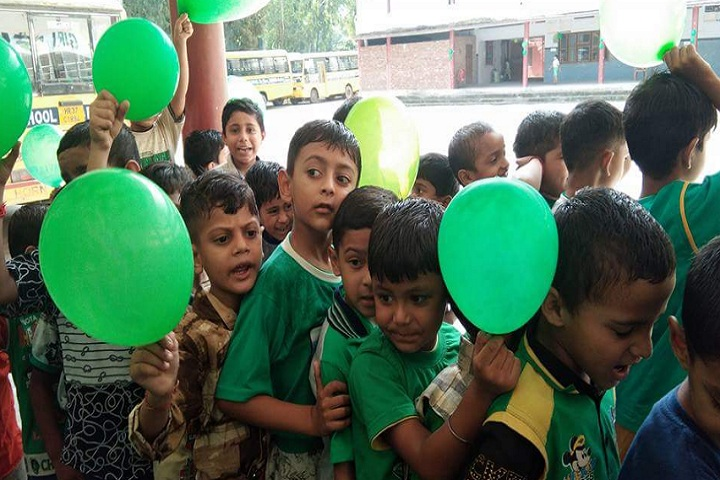 D A V Centenary Public School-Green day