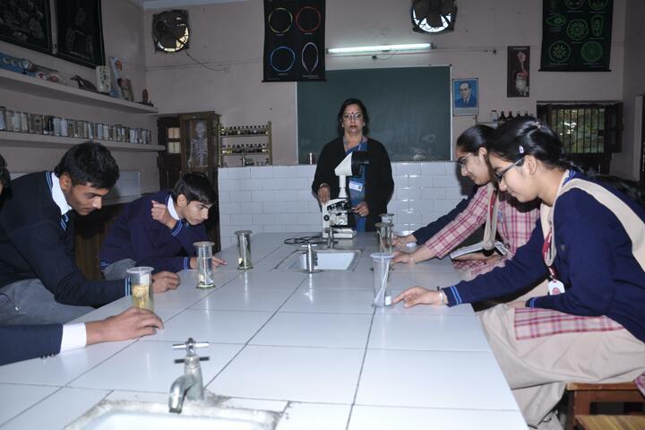 DAV Senior Secondary Public School-Lab