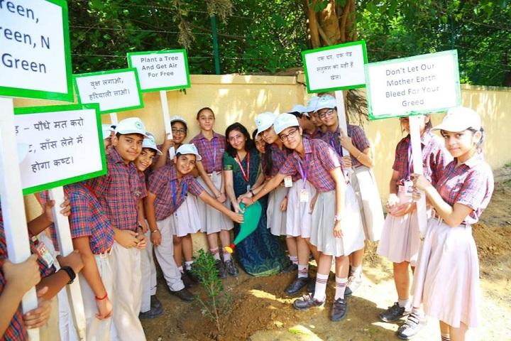 D A V Public School-Plant A Tree