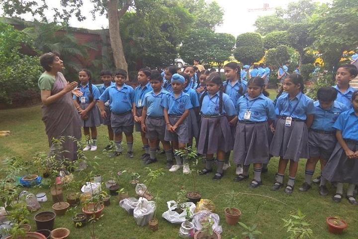 DAV Public School-Plant a Tree