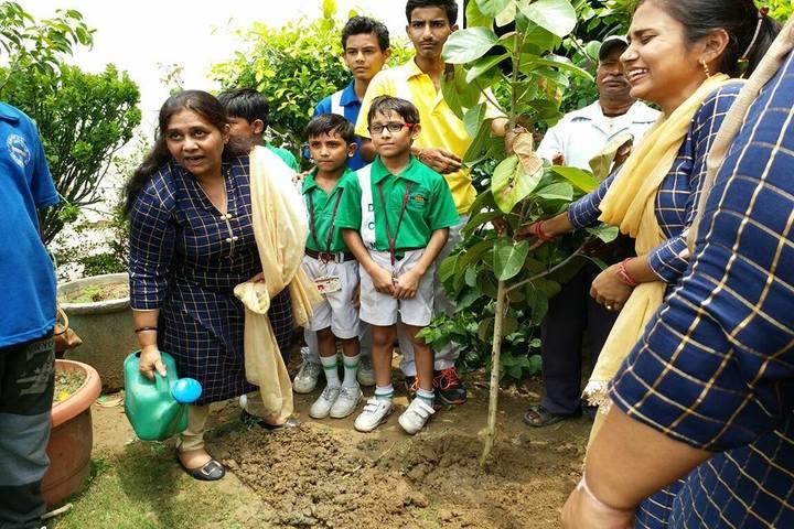 D C Model Senior Secondary School-Plant a Tree Program